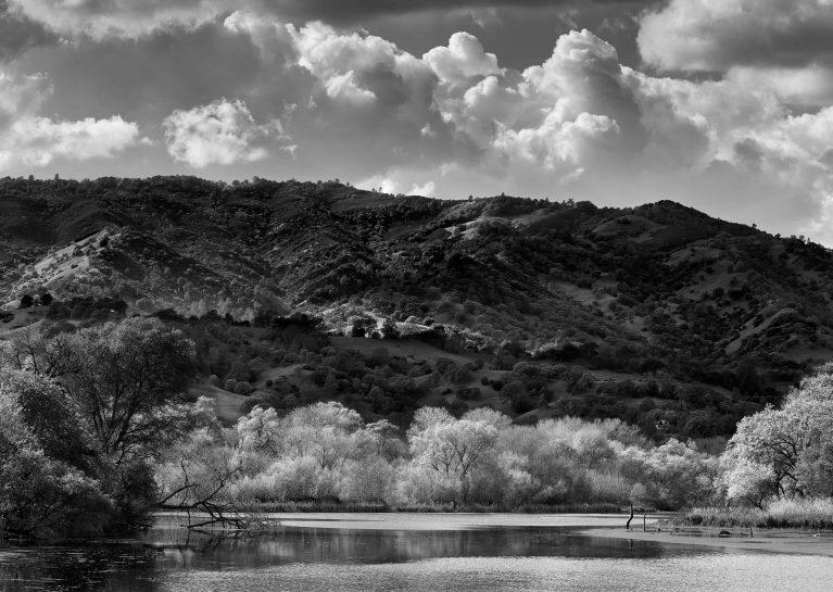 Spring On Lake Solano